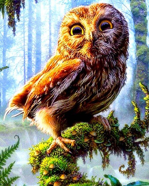 Colorful Owl In Forest Diamond Painting Kit starting at just $8.99. Available in Full Drill with your choice of Square or Round diamonds. Exclusively at Meiiss Diamond Painting. Free Shipping Everywhere. Free Returns. Best Customer Service.   #diamondpainting #paintbydiamonds #owlpainting #Diamonddotz