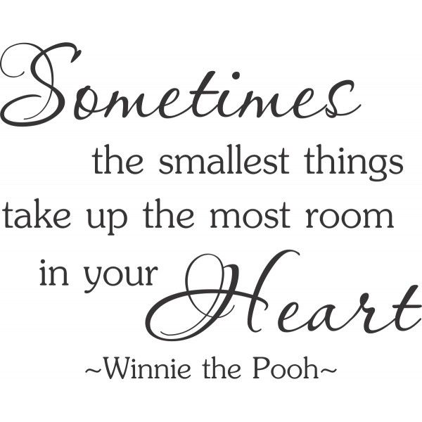 Winnie The Pooh Quotes Sometimes The Smallest Things: Sometimes The Smallest Things Take Up Most Room In Your