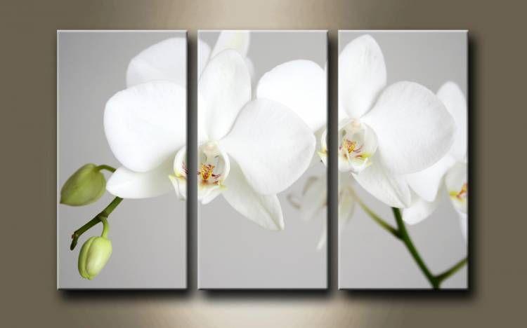 2561951 cuadro tr ptico flor blanca tr ptico cuadro y for Cuadros tripticos online