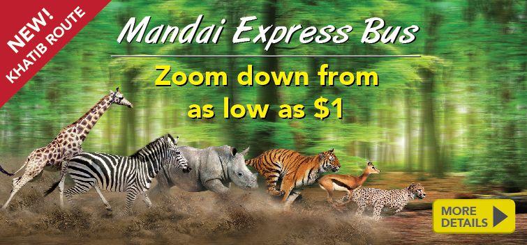 Singapore Zoo The World 39 S Best Rainforest Zoo Singapore Zoo Zoo Singapore