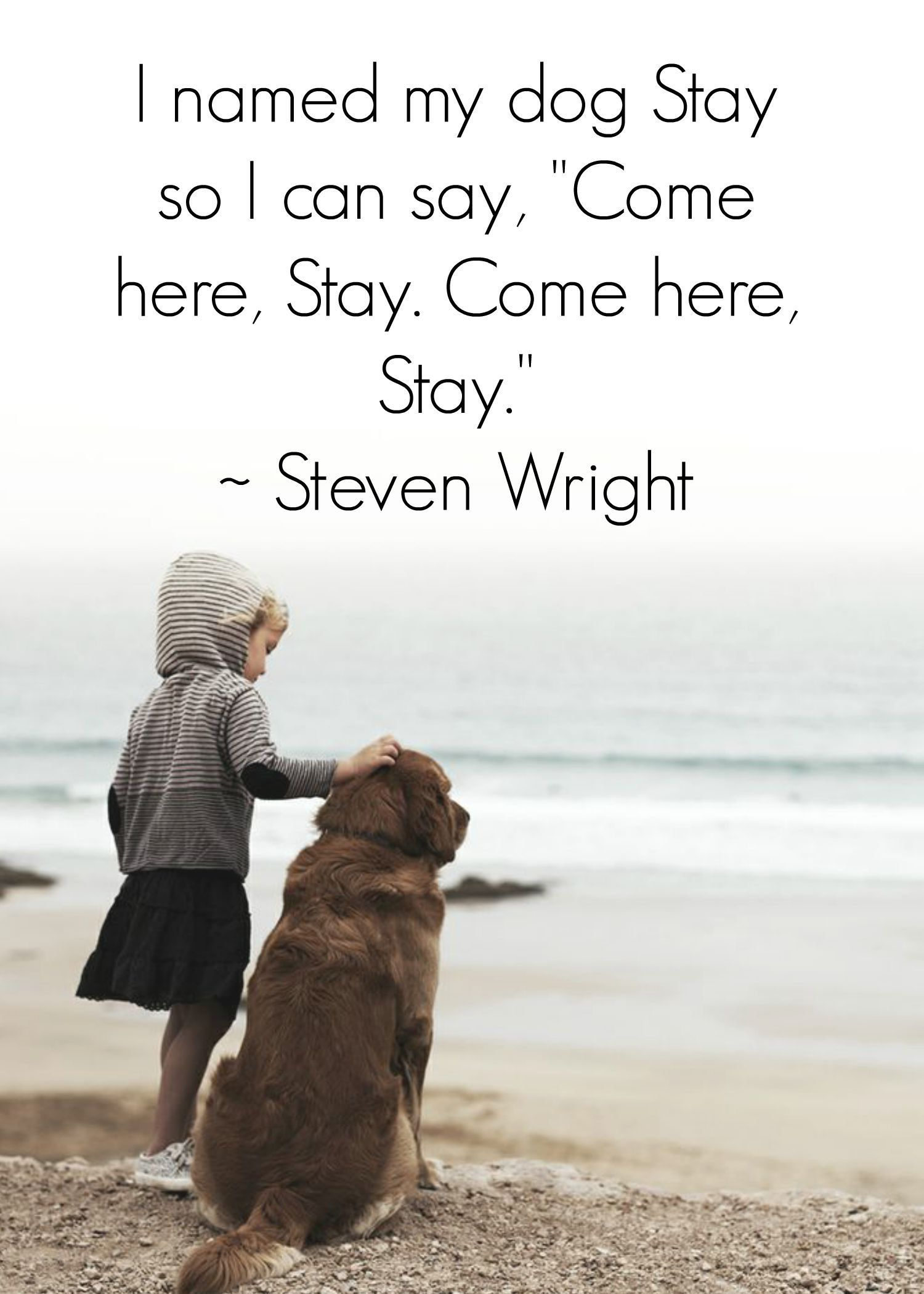 Quotes About Dog Friendship Stay The Dogsaying Quote Dogs  Www.fordogtrainers