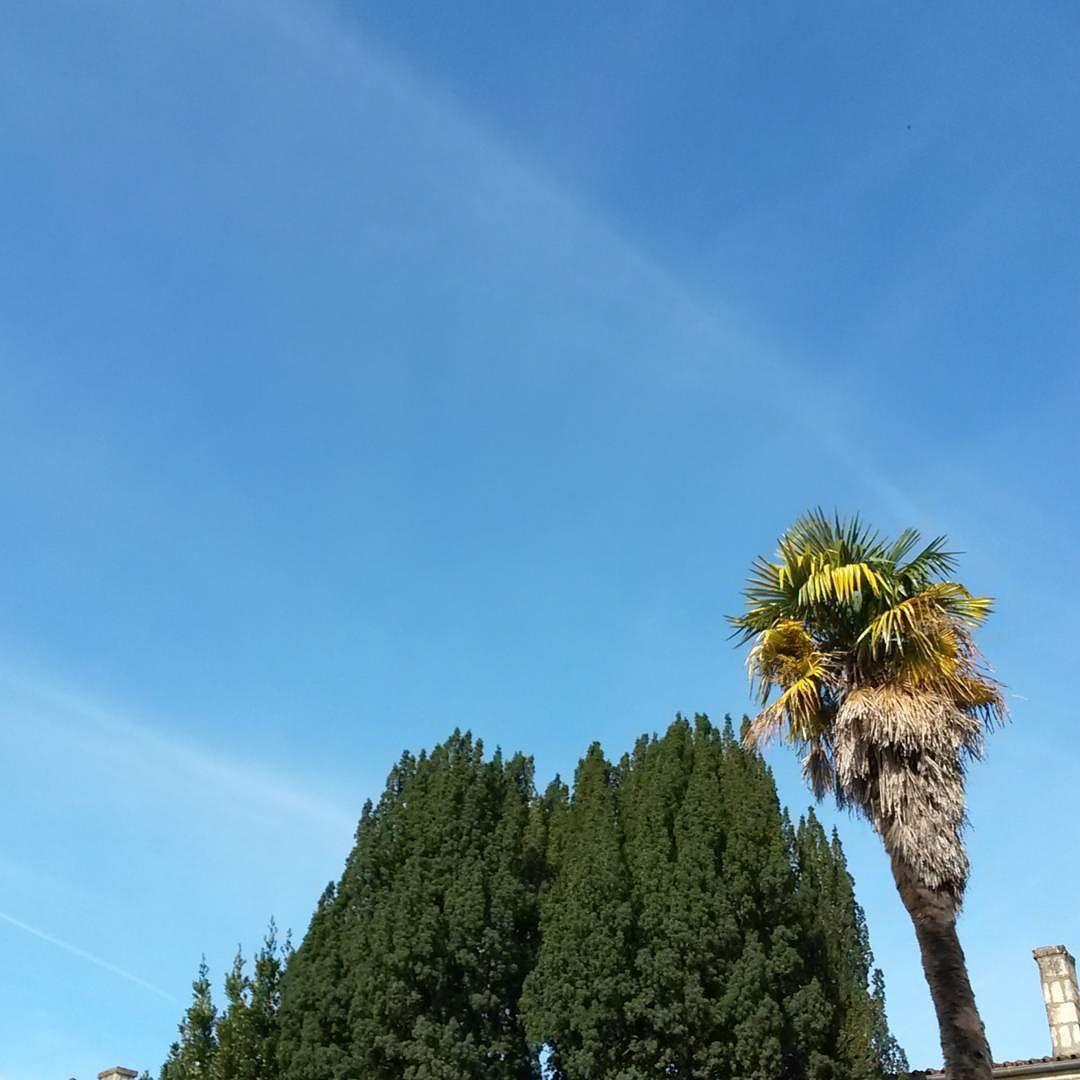 Il fait beau et j'en profite #Niort #cielfie #nofilter #sky #lecieldujour #lcdj #skyporn