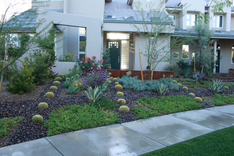 Xeriscape designs xeriscape often used to describe for Garden design xeriscape