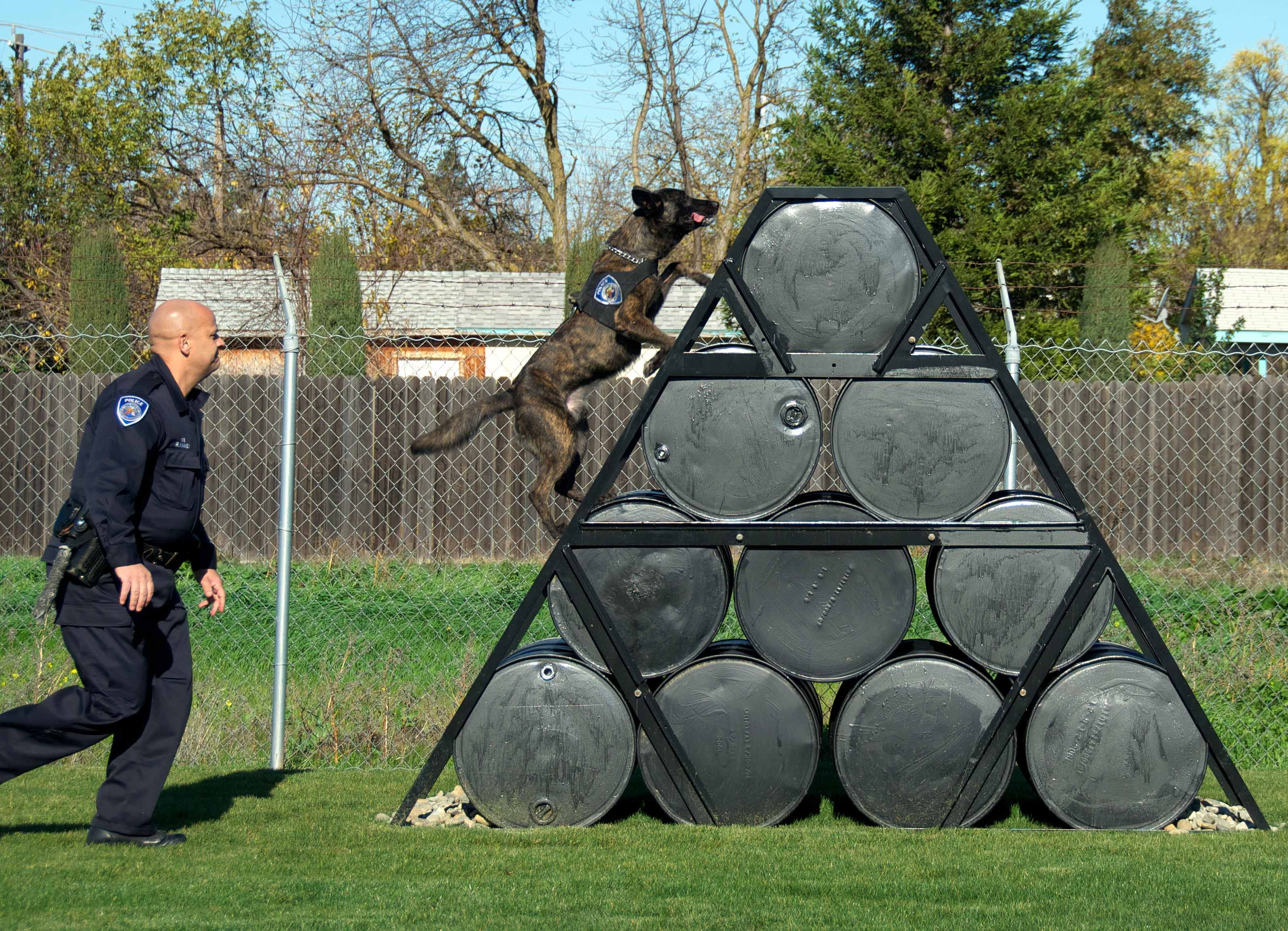 K9 Handler Academy K9 Exercises At The New Training Field In