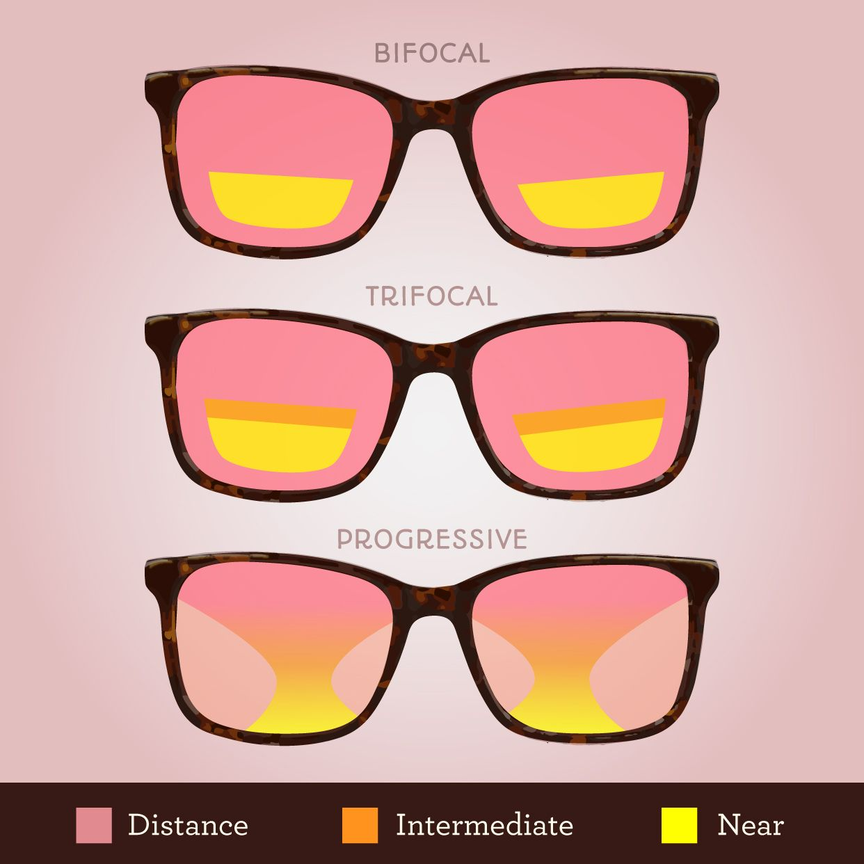 Confused About The Differences Between Bifocals Trifocals And
