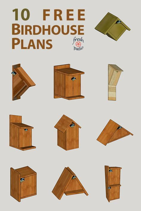10 #Einfache #Vogelhaus #Planung #errichtet #zu #Kosten #von # $ 3. #vogelhausbauen