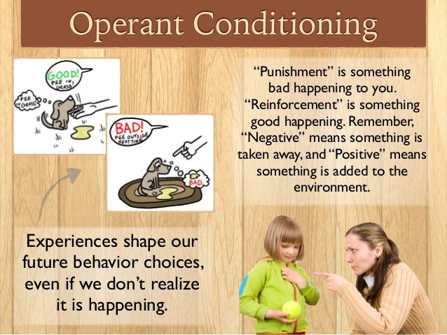 Operant Conditioning Punishment Vs Reinforcement Psychology