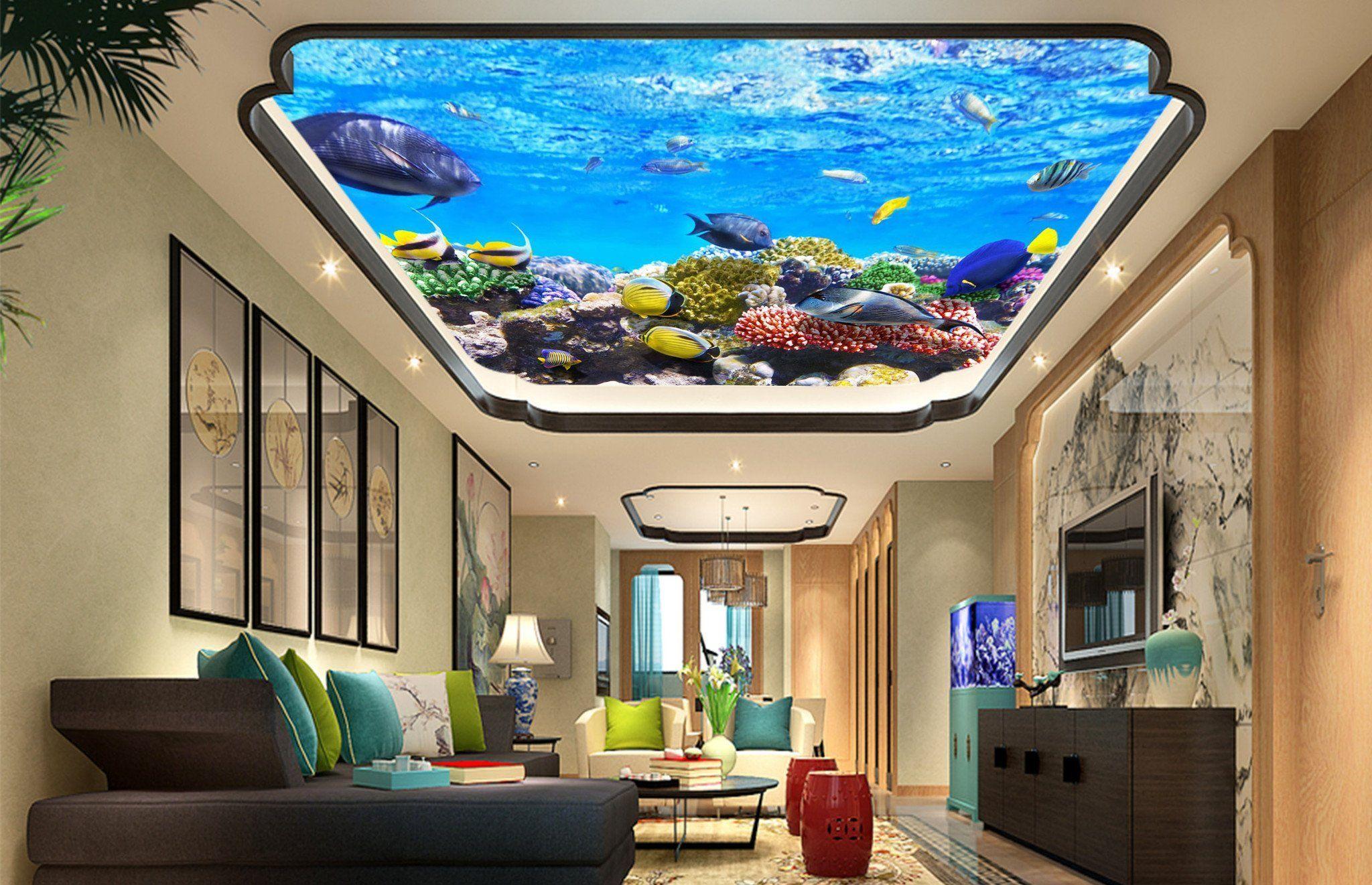 Ocean Corals Fishes