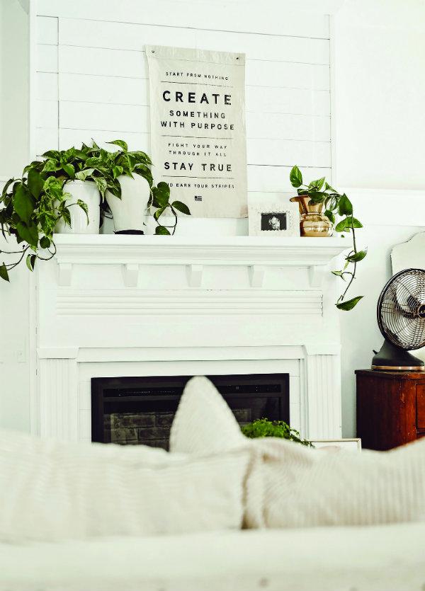 15+ The white cottage farm model