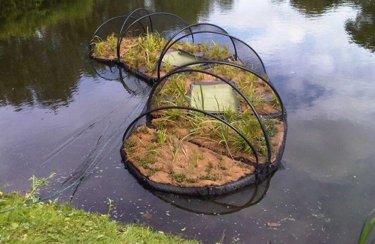 Floating Ecosystems Floating Garden Forest Garden 640 x 480