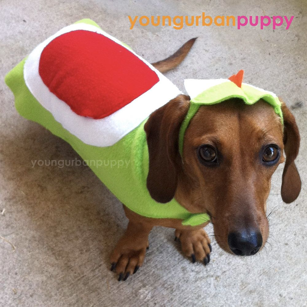 Image result for dachshund dressed like yoshi