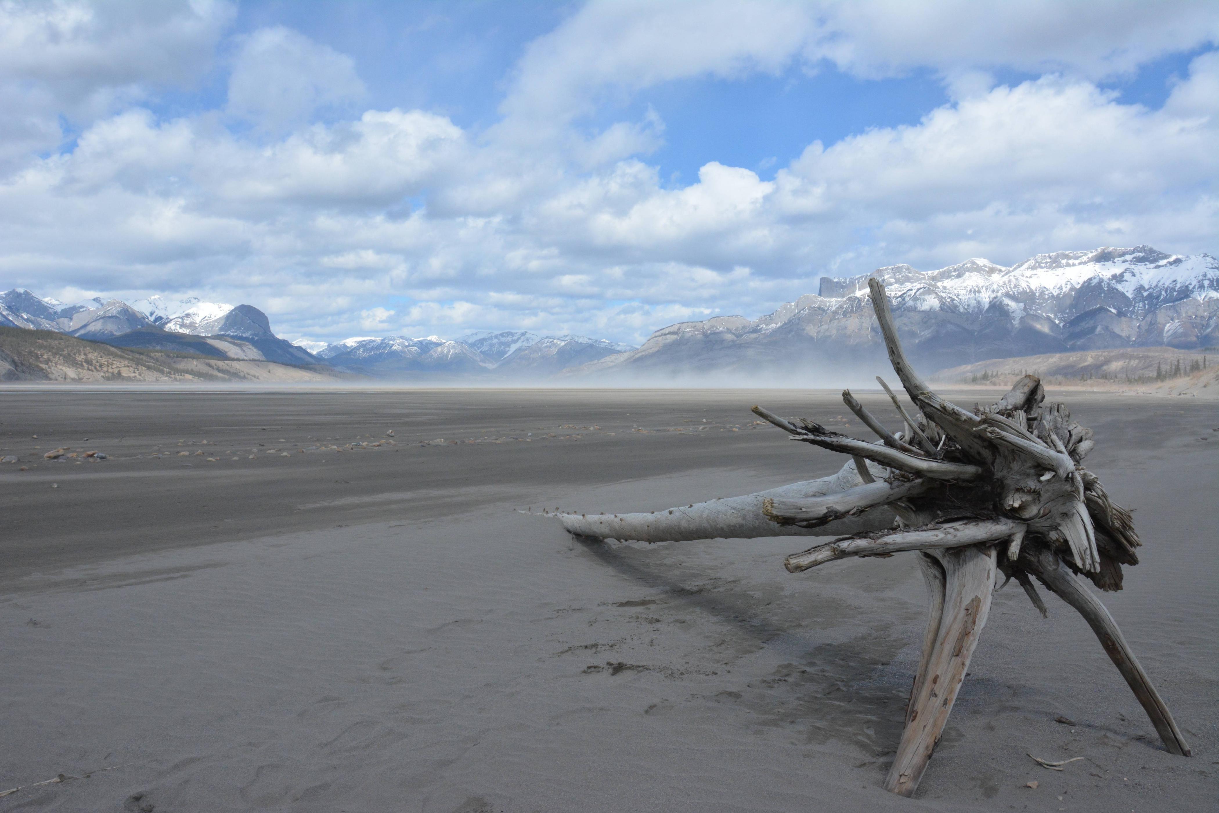 Jasper Lake Alberta [OC] [6000x4000] By Zach Brenissey