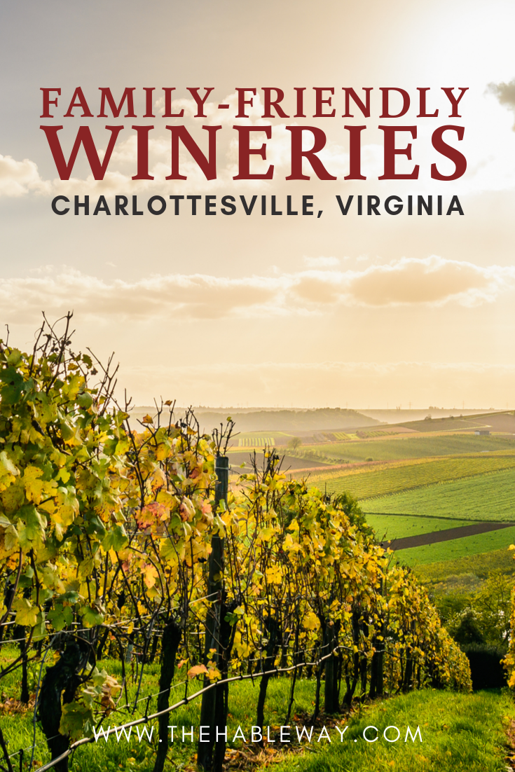 Family-Friendly Wineries In Charlottesville