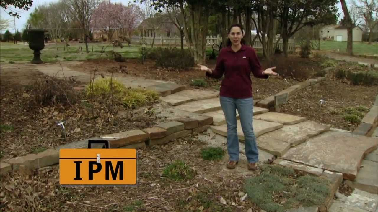 Oklahoma Gardening host Kim Toscano gives a brief overview of IPM ...
