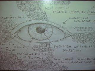 KU 1 - Minä, kuva ja kulttuuri: Tehtävä 2 - Silmän piirtäminen ja doodlaus