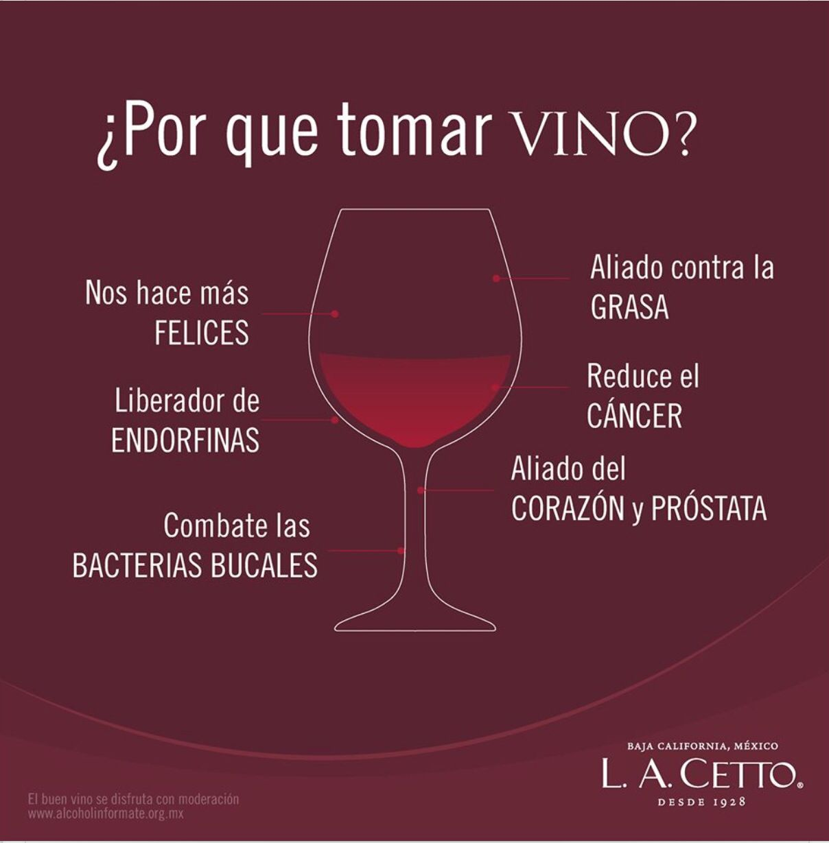 A Tomar Vino Tinto Wine Lovers Wine And Cheese Party Coffee Wine