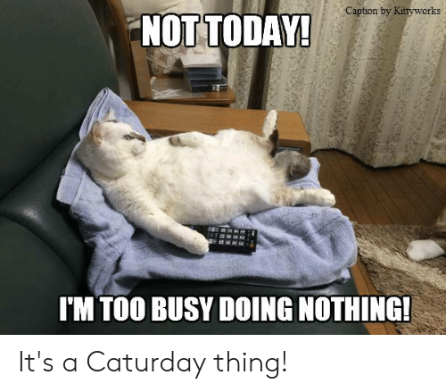 Doing Nothing Today Meme