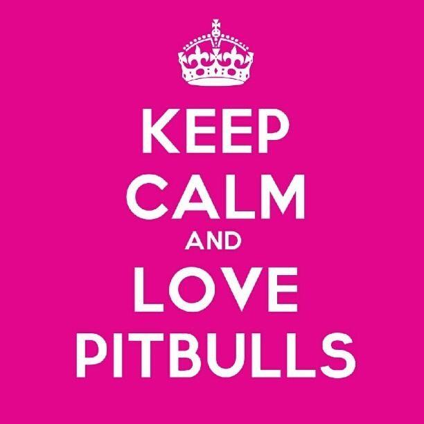 Love pitbulls