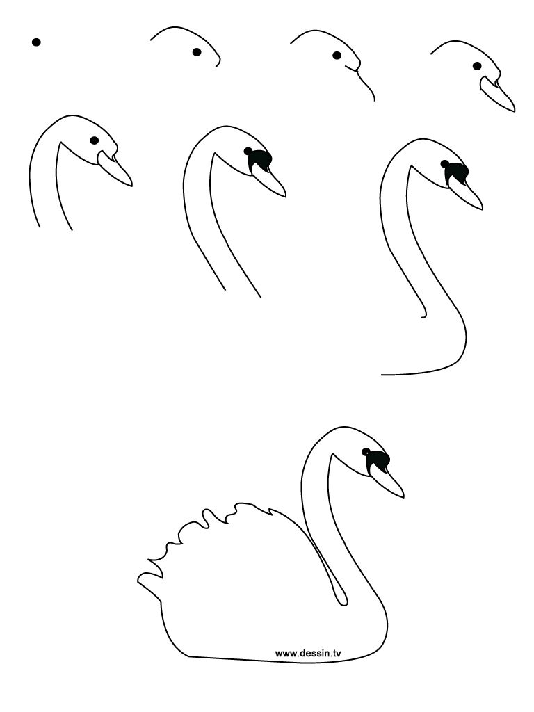Drawing realistic Birds Step by Step | learn how to draw a ...