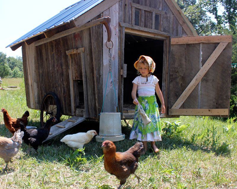 Moveable chicken coop inspiration!