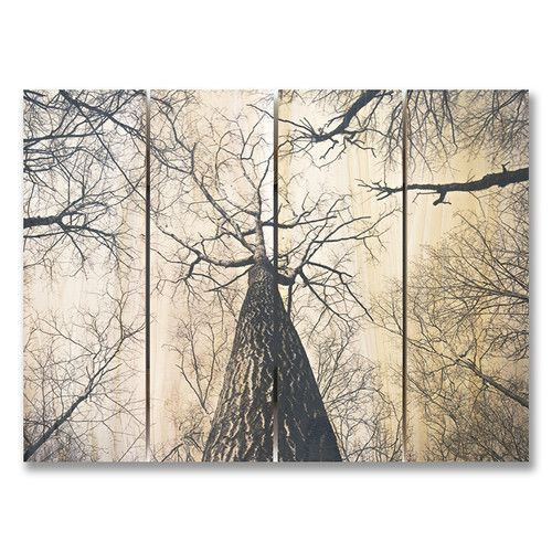 Found it at Wayfair - 4 Piece Among Giants Photographic Print Set
