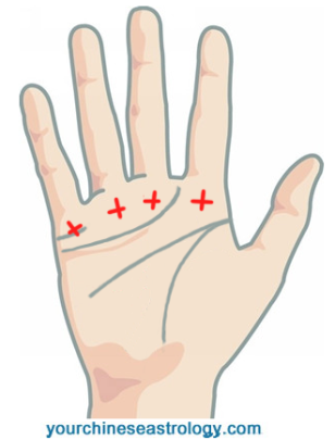 Protected Blog Log In Palm Reading Palmistry Palmistry Reading