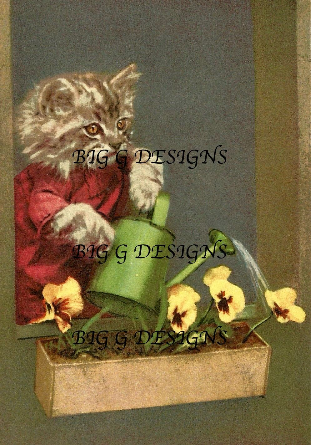 Vintage humorous funny cat in clothes postcard watering