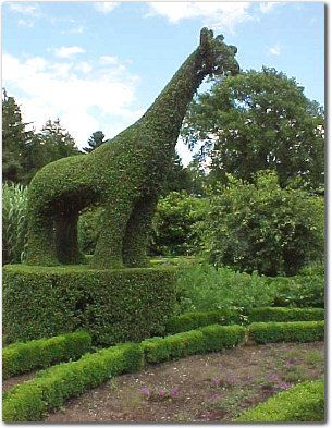 17 Best 1000 images about Animal Topiaries on Pinterest Topiary