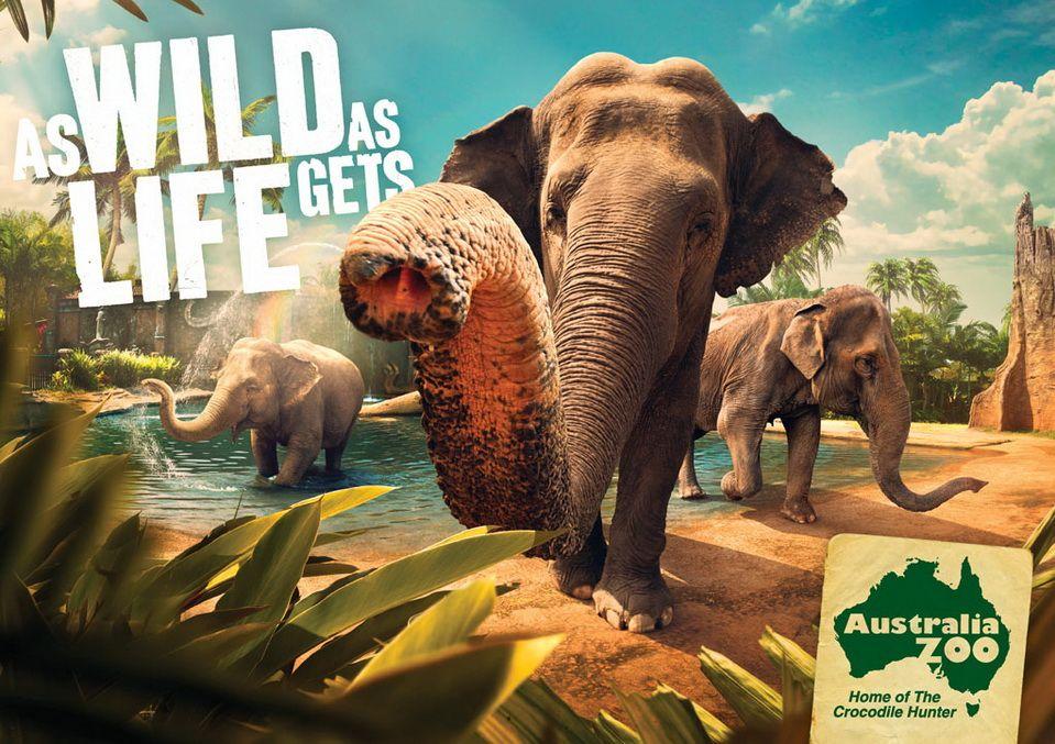 картинка реклама австралии приготовить