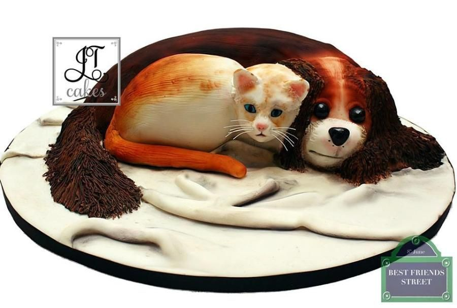 Carved cake. Best friend's cake collaboration - Cake by JT Cakes