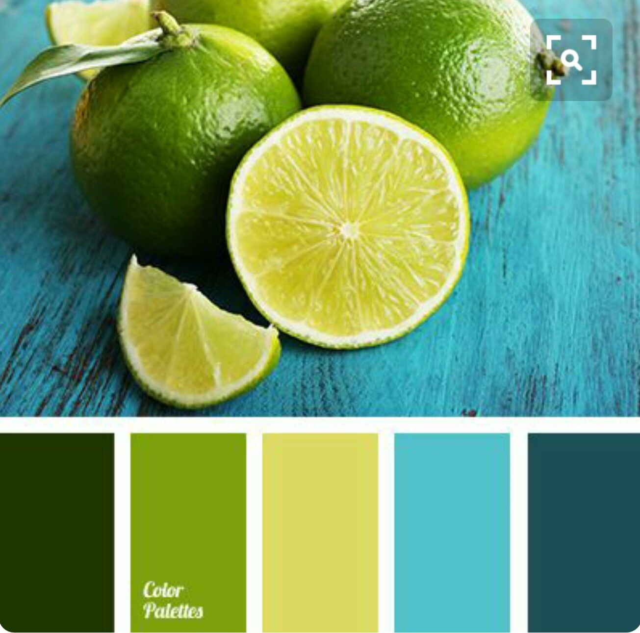 So Clean And Fresh With Images Green Colour Palette Color