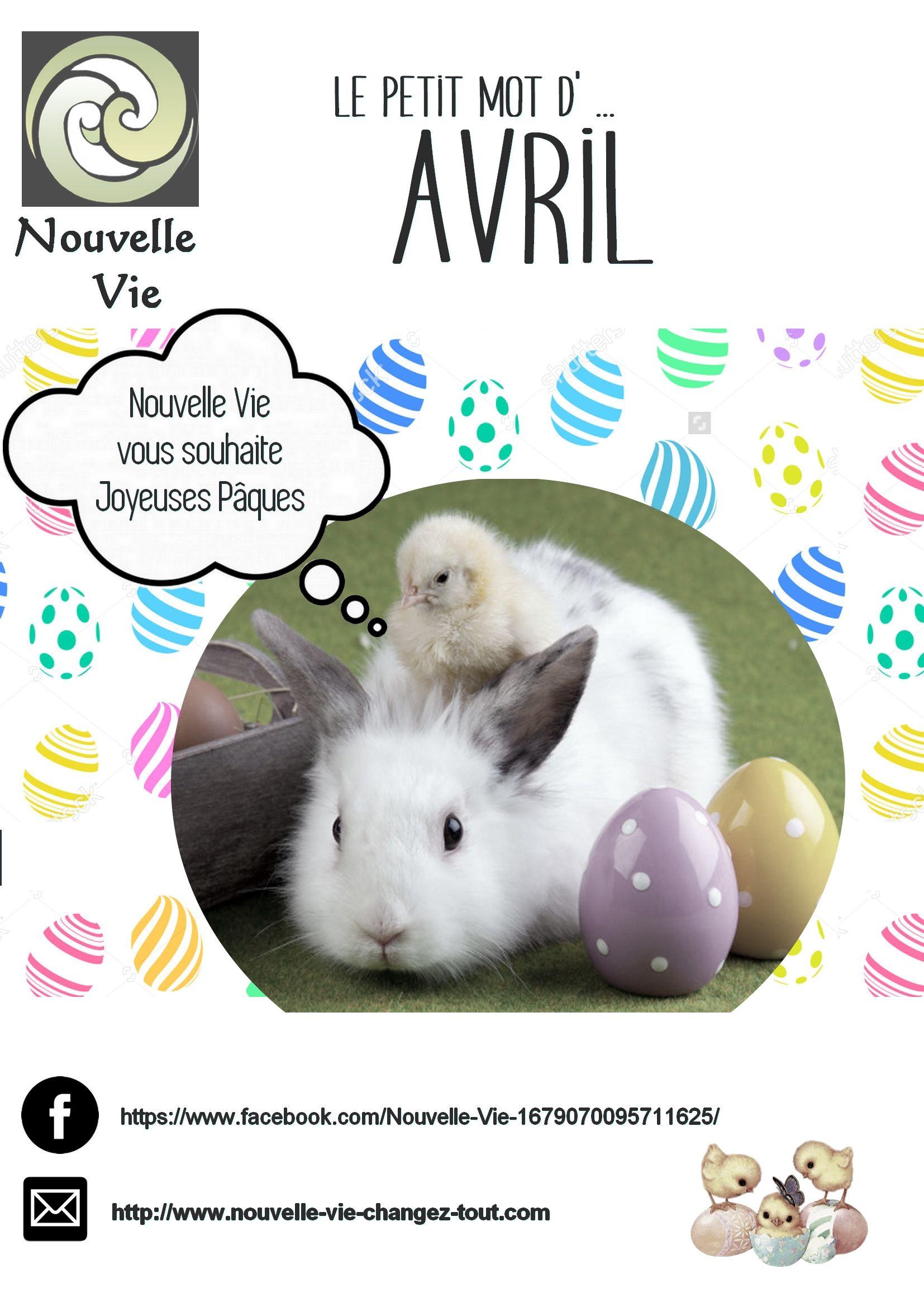 Epingle Par Sophie Noblet Nouvelle Vie Sur Newsletter Nouveau Ne Nouvelle Vie Joyeux