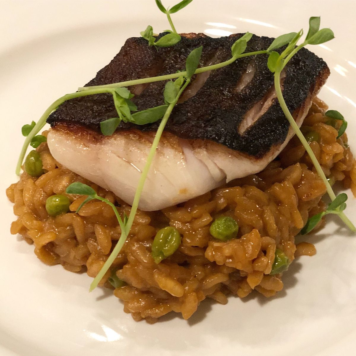Sous Vide Black Cod With Pea Risotto (With Images