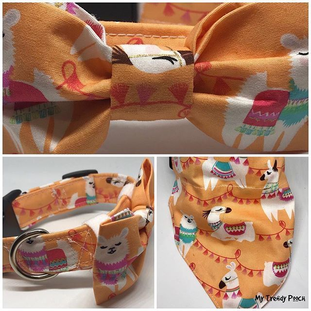 Lama With Tassels Dog Collar With Matching Bow Tie Or