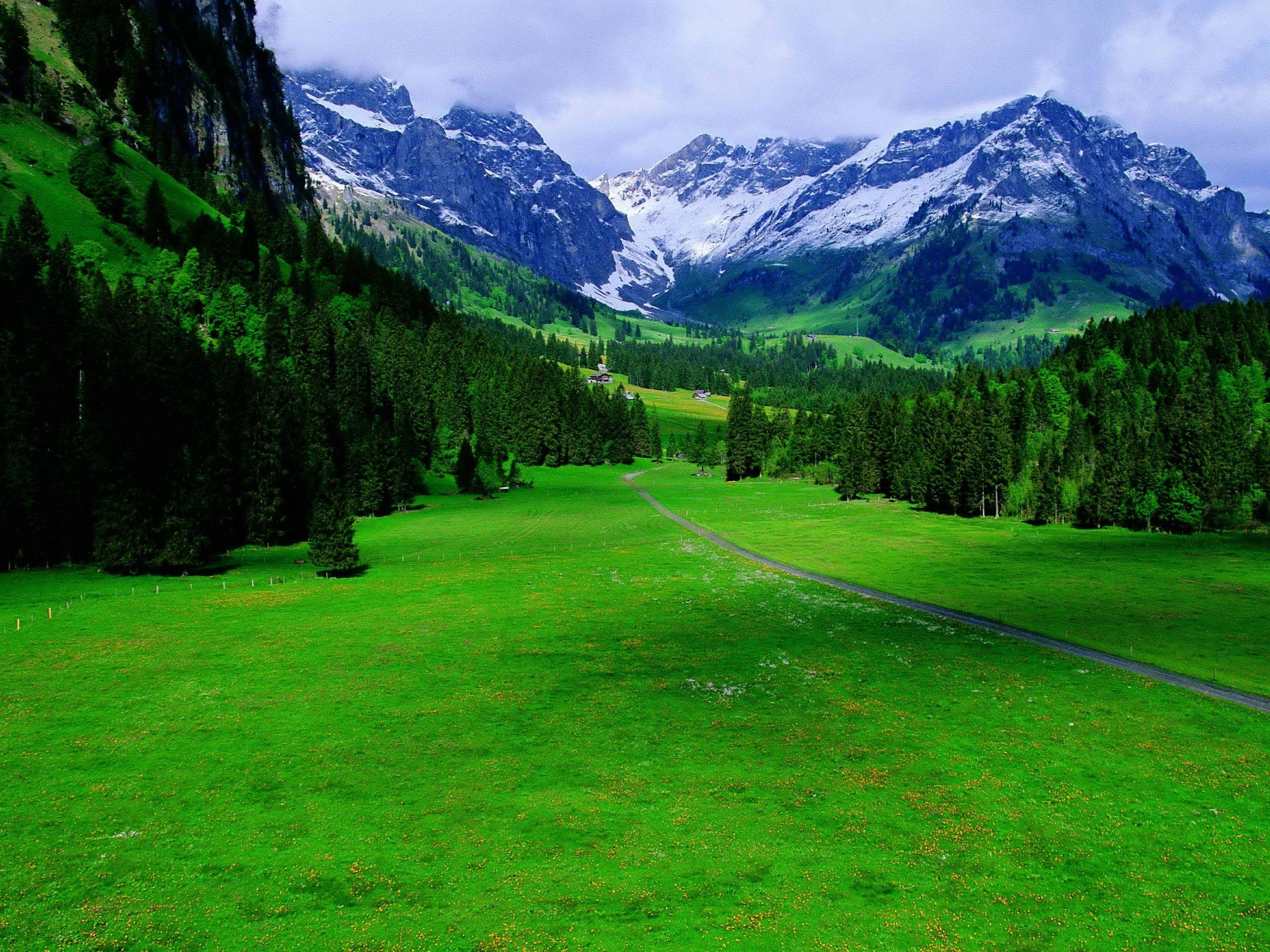 best for farm   Nostalgic Relaxation   Pinterest   Landscape ... for swiss countryside wallpaper  555kxo