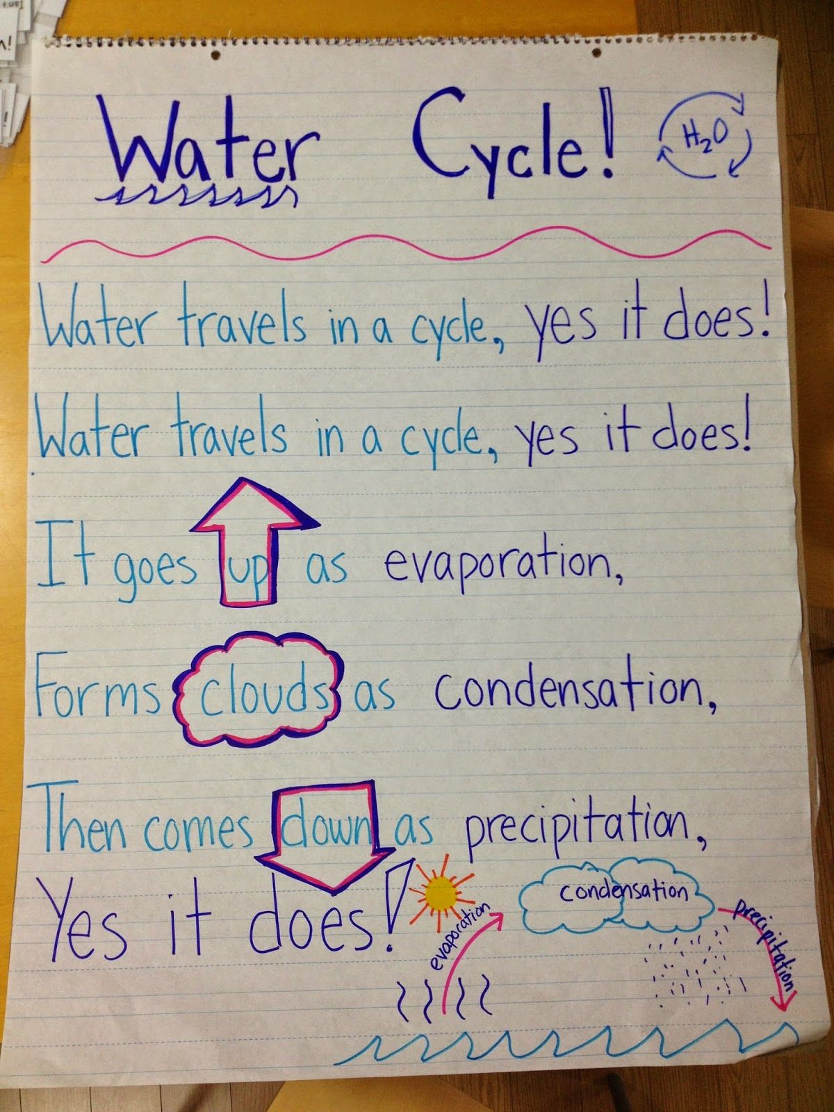 Risultati immagini per water cycle first grade also the anchor chart science pinterest charts rh