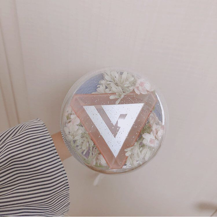 카 on | Carat bong, Rose quartz serenity, Seventeen kpop