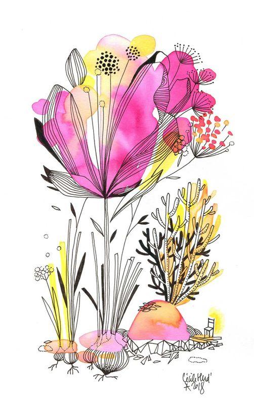La Fleur Corail Les Chosettes Comment Dessiner Une Fleur