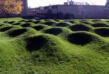 No Such Site U M Wp Hosting Maya Lin Landscape Natural Playground