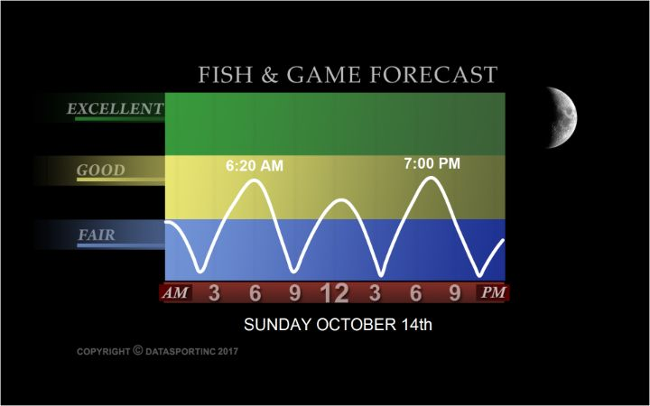 Fish and Game Forecaster Realtree (With images