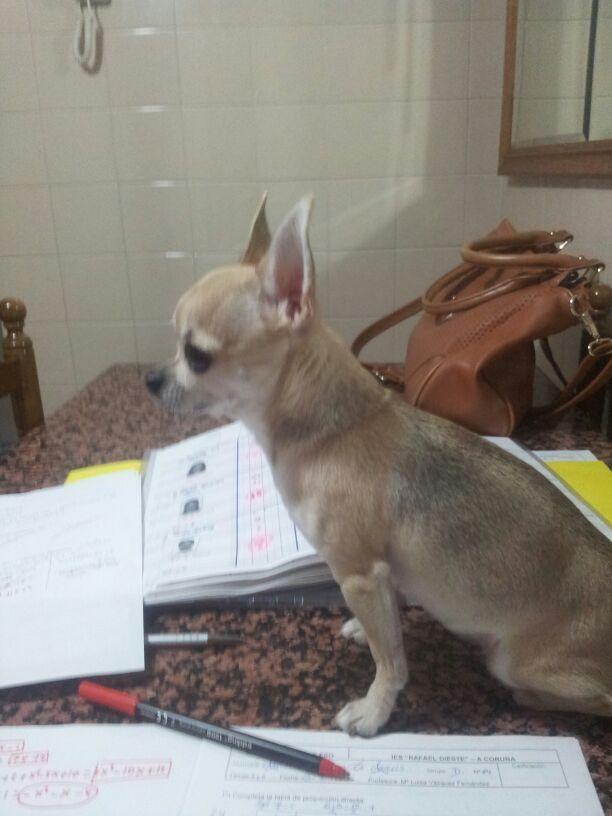 Mia estudiante