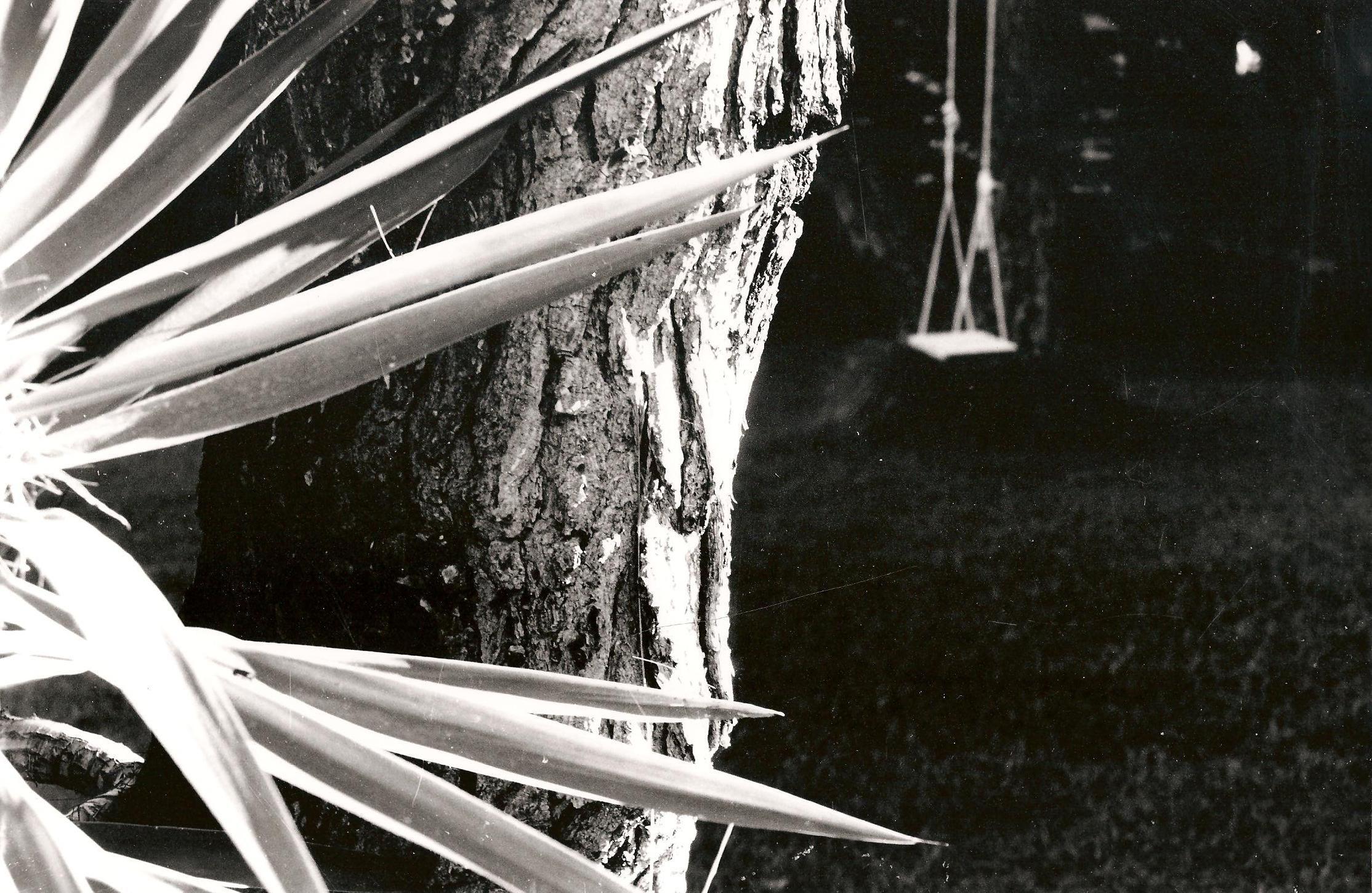 my favorite swing, photo by myrto