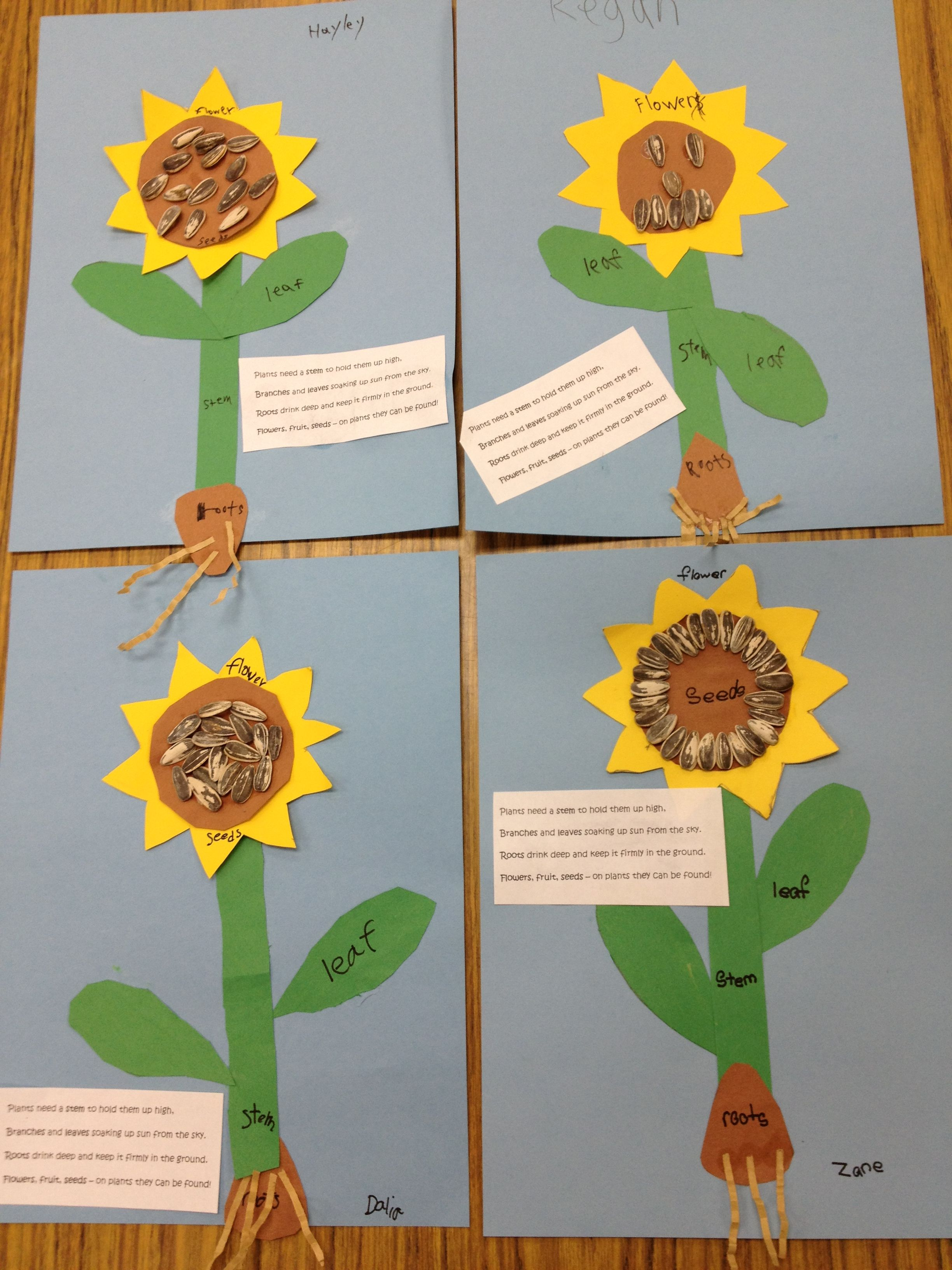 Sunflowers With Parts And A Poem