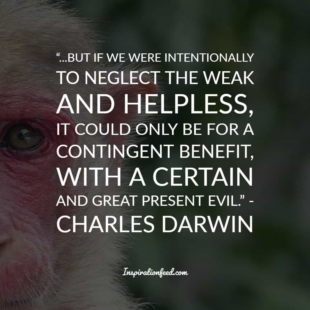 35 Charles Darwin Quotes And Sayings About Life Survival And Change Inspirationfeed Charles Darwin Quotes Darwin Quotes Charles Darwin