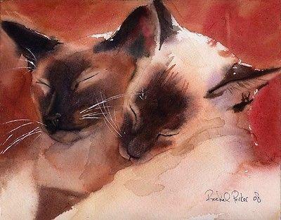 Giclee PRINT Siamese Cat Art Watercolor pet portrait Pair chocolate seal point