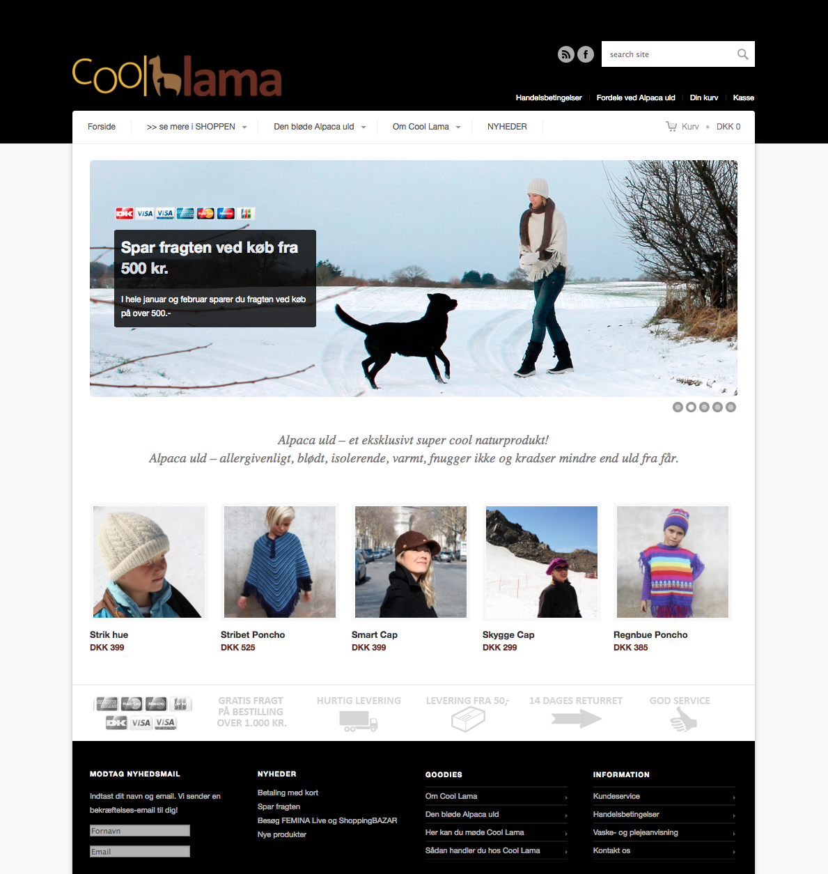Cool Lama website