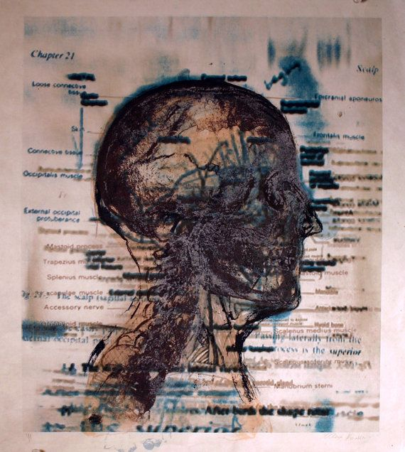 Anatomical and Medical Art Skull Scalp Anatomy by ANKarabin, $45.00