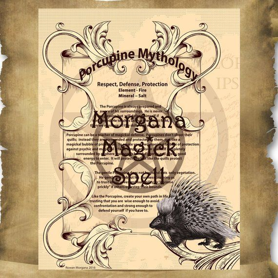 PORCUPINE MYTHOLOGY Digital Download For Your Book Of