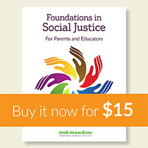 Social Justice Course Foundations In Social Justice Oak Meadow Social Justice Oak Meadow Foundation