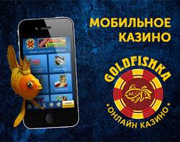 Казино голдфишка играть i gaminatorslots.com.игровые автоматы онлайн бесплатно